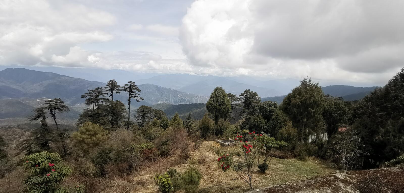 自然不丹秀丽山河 图库摄影