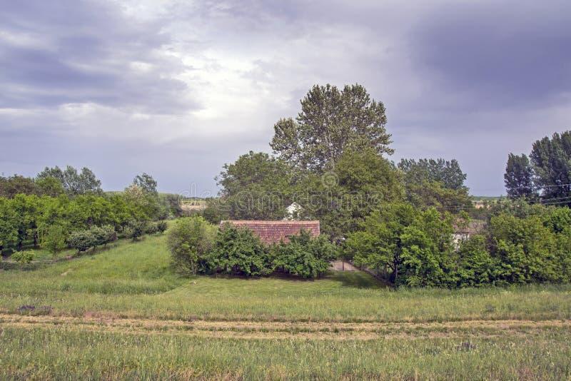 自然中的房子 免版税图库摄影