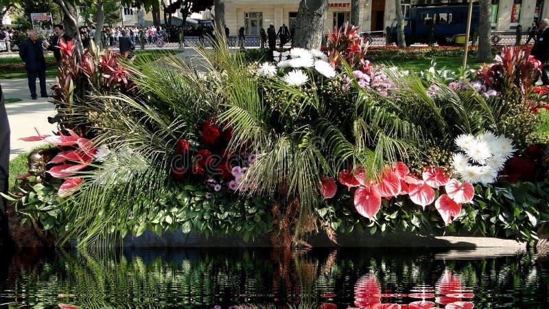 自然五颜六色的花的构成在城市公园 免版税库存照片
