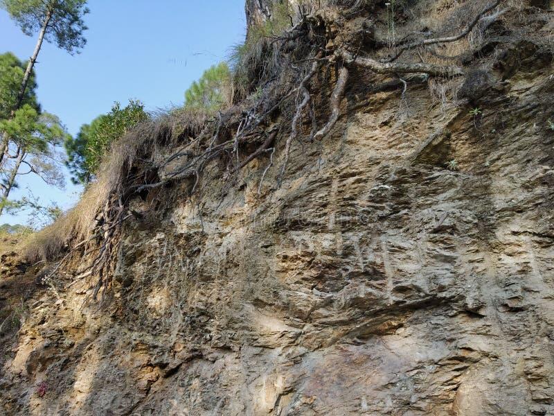 自然令人敬畏的秀丽结构pahadi Uttrakhand ranikhet 免版税库存照片