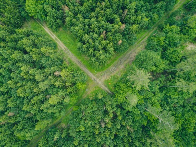 自然公园风景在从上面布尔诺,捷克 免版税图库摄影