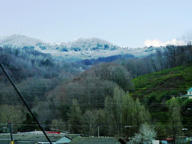 自然冬天对比  免版税库存照片