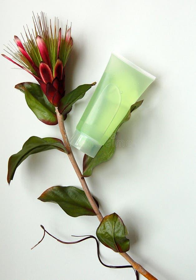 自然化妆用品的花 免版税库存图片
