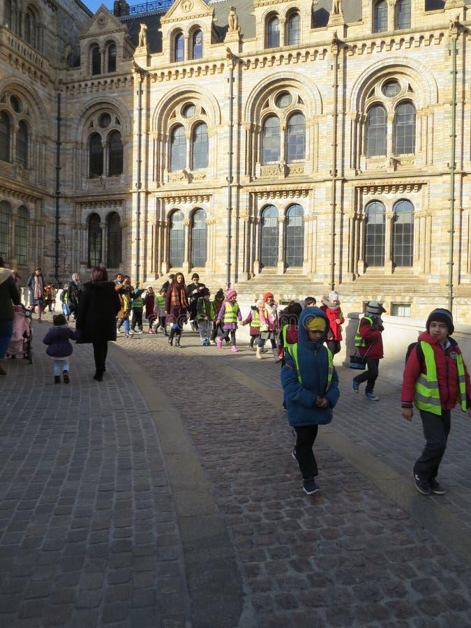自然历史博物馆,伦敦 孩子组织了游览 库存图片