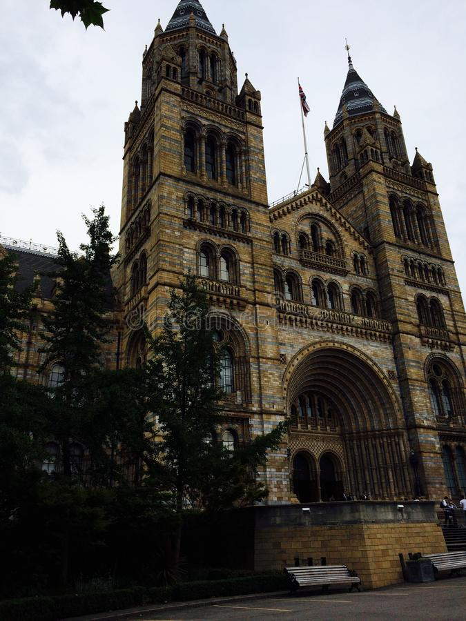自然历史记录的博物馆 免版税图库摄影