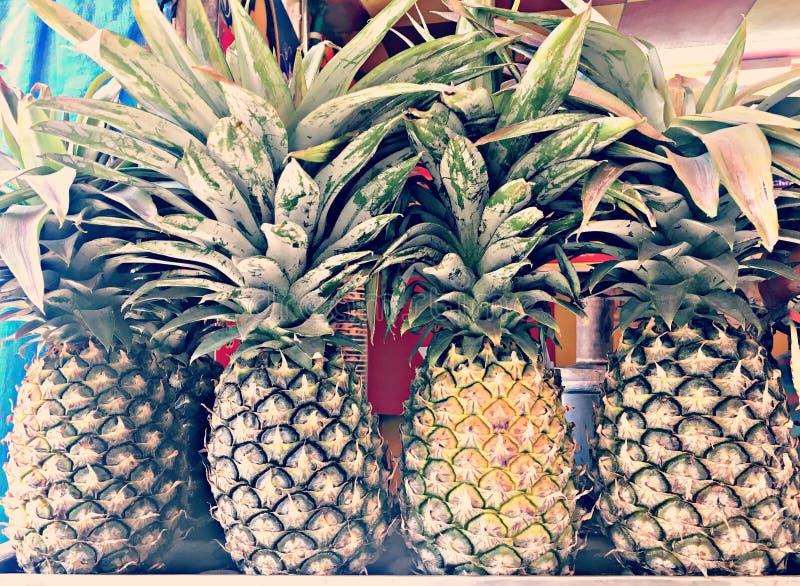 自然和健康菠萝 免版税图库摄影