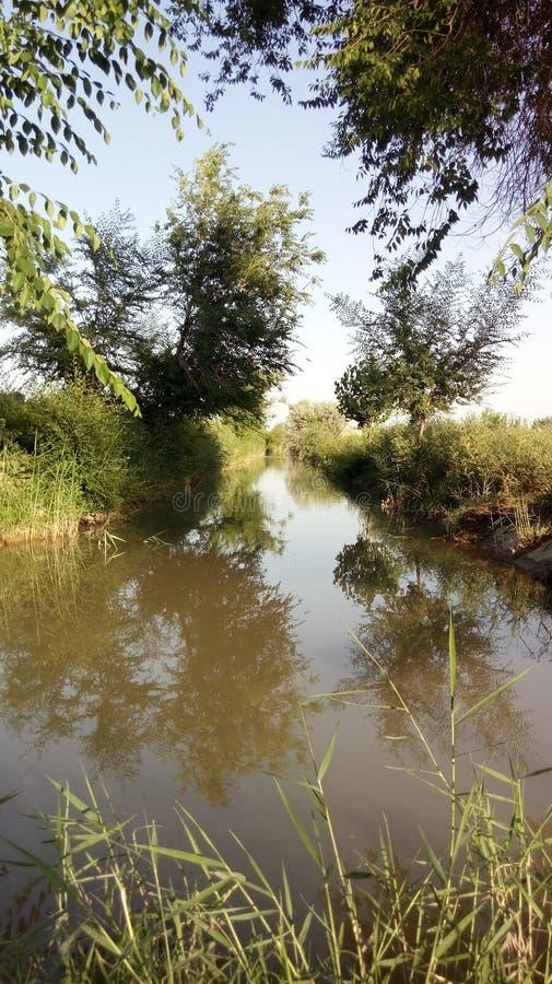 自然和无边的河 库存图片