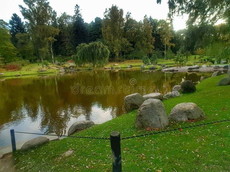 自然和水 库存照片