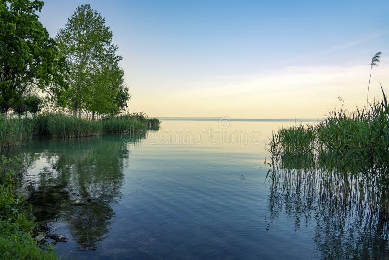自然和芦苇反射在巴拉顿湖在匈牙利日落的 免版税库存图片