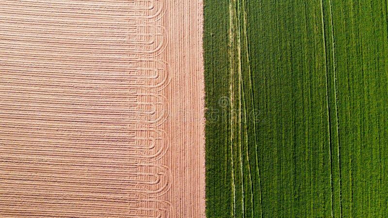 自然和风景:领域的鸟瞰图,耕种,绿草,乡下,种田, 免版税图库摄影