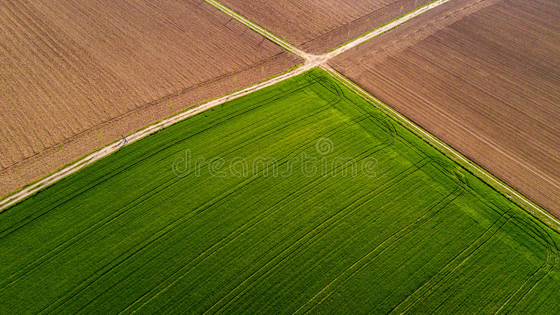自然和风景:领域的鸟瞰图,耕种,绿草,乡下,种田, 免版税库存照片