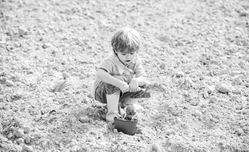自然土壤 在种田的新技术 r r o 植物的工作者 工作与 图库摄影