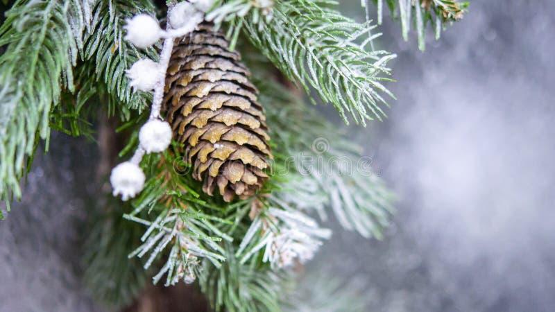 自然圣诞节新年的玩具杉木锥体和圣诞树分支特写镜头 免版税图库摄影