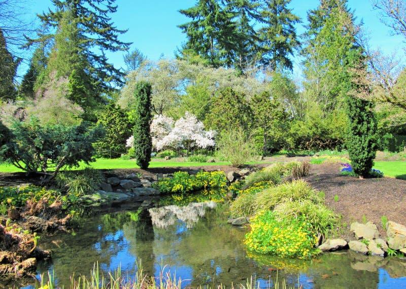 自然在城市:女王伊丽莎白公园庭院,温哥华明亮的风景, 2018年 库存图片