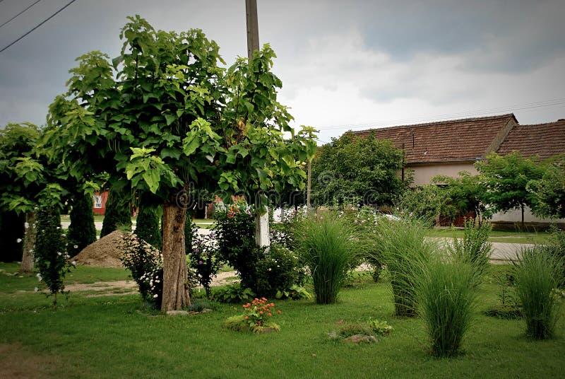 自然在小村庄 免版税图库摄影