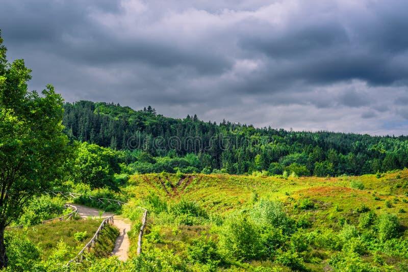自然在有黑暗的云彩的丹麦 库存照片