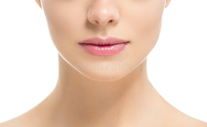 自然在白色隔绝的唇膏桃红色红色的嘴唇妇女秀丽健康皮肤关闭 免版税库存照片