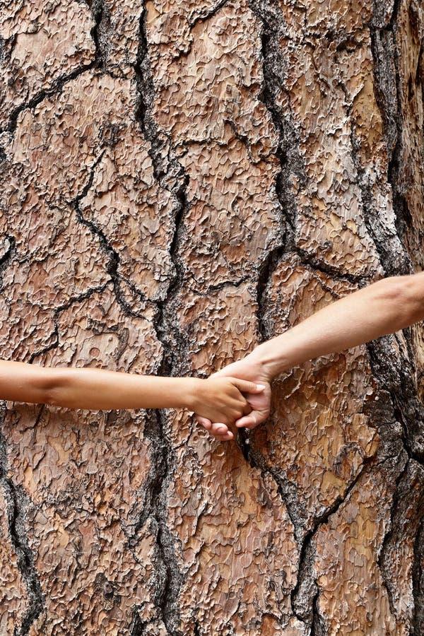 自然地球恋人-握手的树huggers 免版税图库摄影
