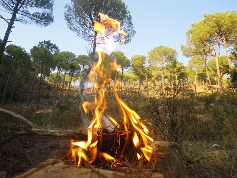 自然壁炉 图库摄影