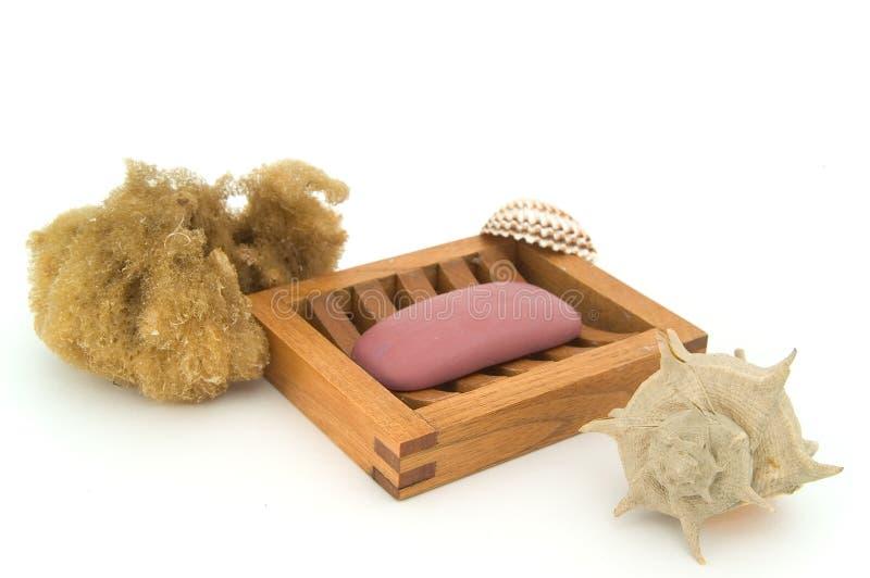 自然壳肥皂海绵 库存照片
