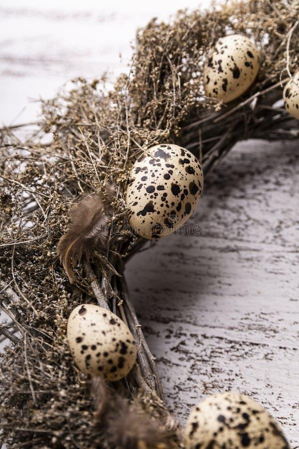 自然复活节装饰,装饰用鹌鹑蛋 免版税库存照片