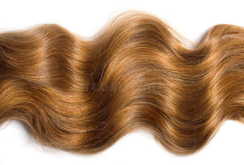 自然头发 库存图片