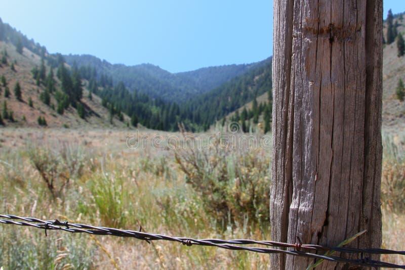 自然山篱芭 库存图片