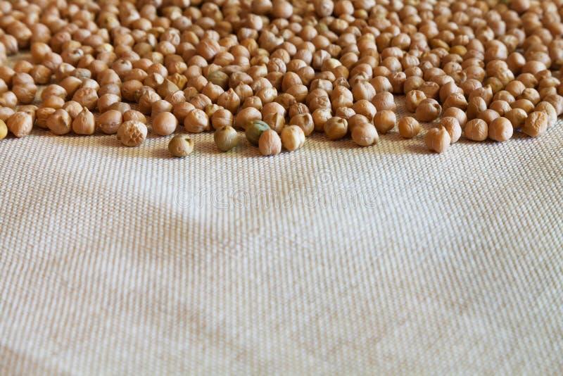 自然干鸡豆和棉织物 库存照片