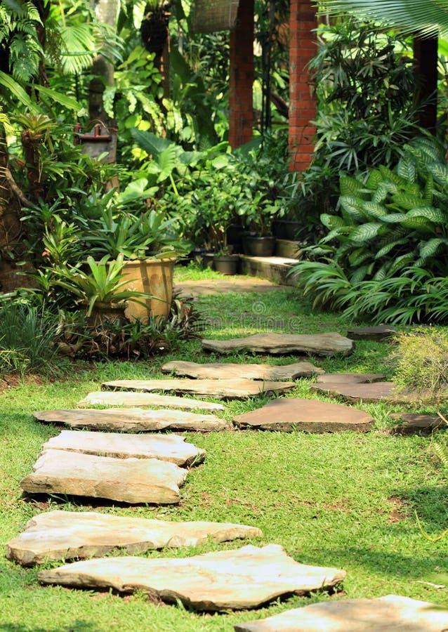 自然庭院的醉汉 免版税库存照片
