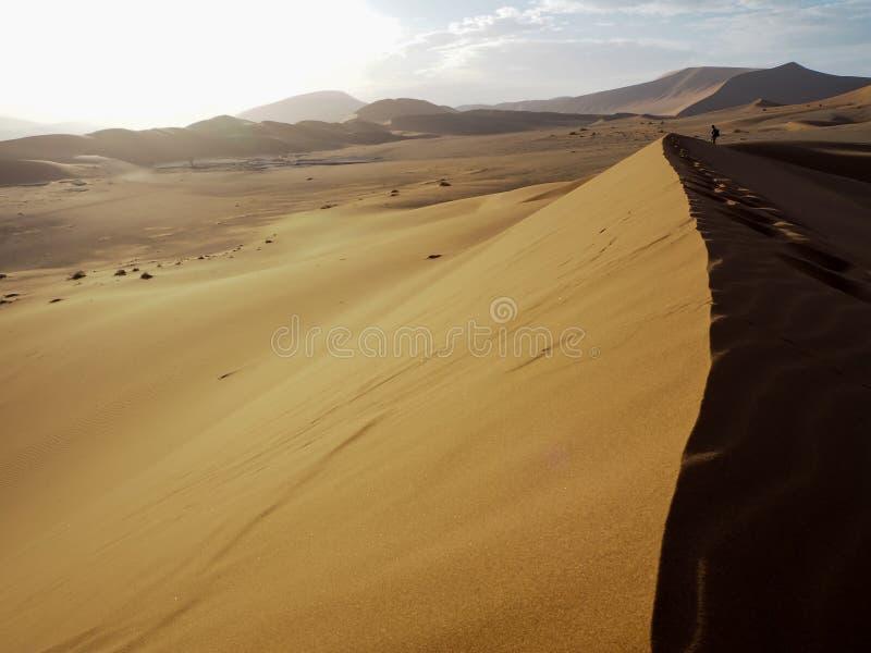 自然弯曲的土坎线和脚印在生锈的红色沙丘与强的阳光在沙漠环境美化与旅客身分 库存图片