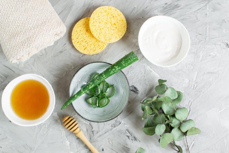 自然成份自创身体面具奶油洗刷与维拉盐溶橄榄油蜂蜜的芦荟 免版税库存图片