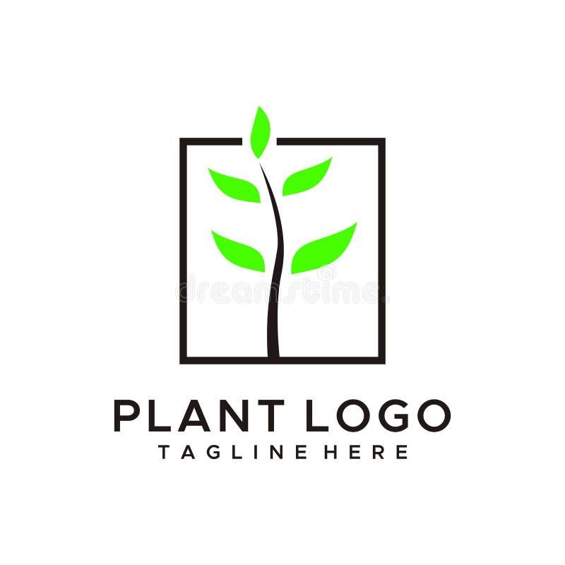 自然或树,植物商标设计 皇族释放例证
