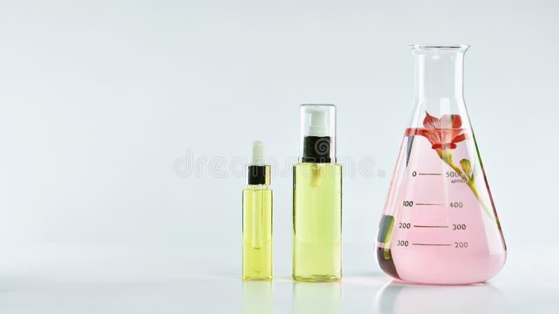 自然护肤美容品、自然有机植物学提取和科学玻璃器皿 免版税库存照片