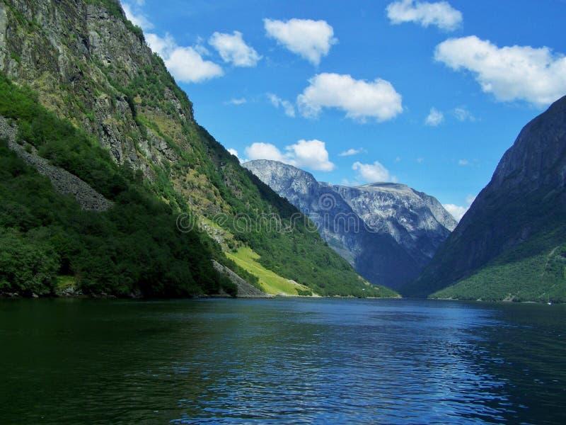 自然挪威夏天 水,森林海湾在一好日子 图库摄影