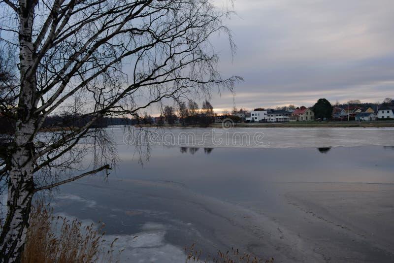 自然摄影在瑞典 免版税图库摄影