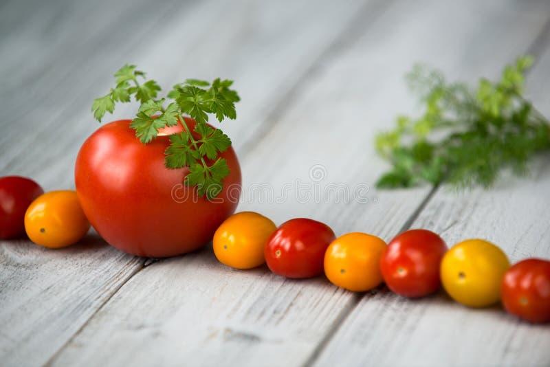 自然有机红色和黄色西红柿和蕃茄线用新鲜的荷兰芹在上面在木背景 免版税库存图片