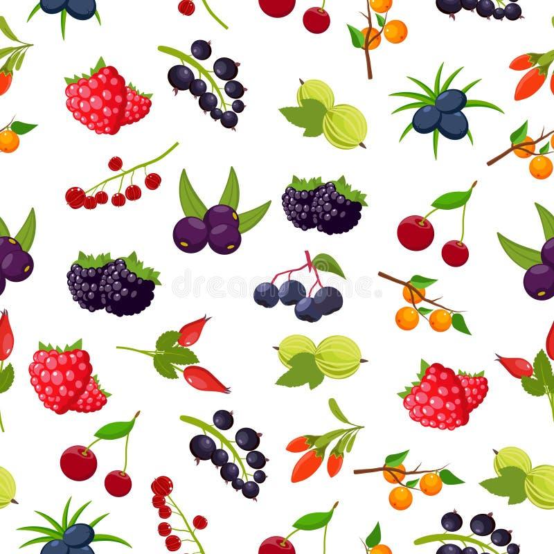 自然有机莓果无缝的样式用无核小葡萄干,樱桃,莓,花揪,鹅莓, dogrose,黑莓, goji 库存例证
