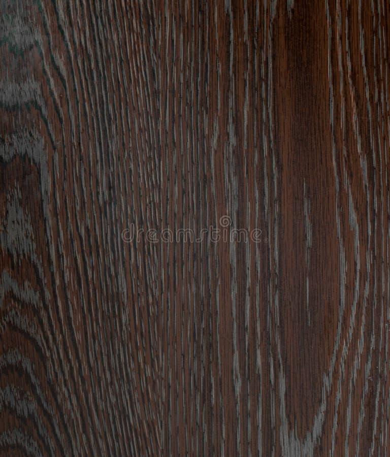 自然木头布朗纹理  免版税库存图片