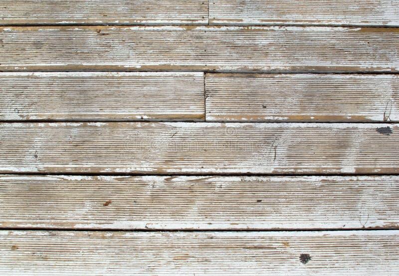 自然木头葡萄酒grunge空白背景  免版税库存图片