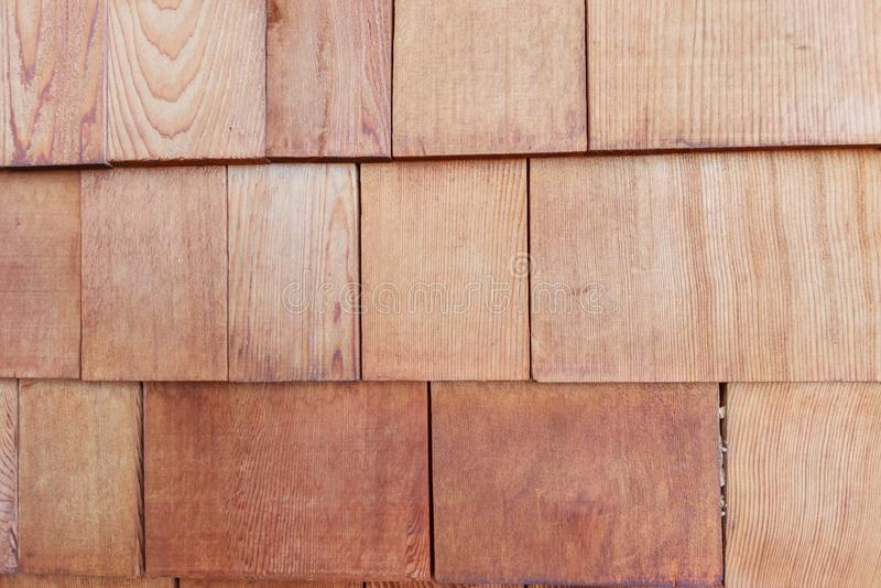 自然木纹理 库存照片