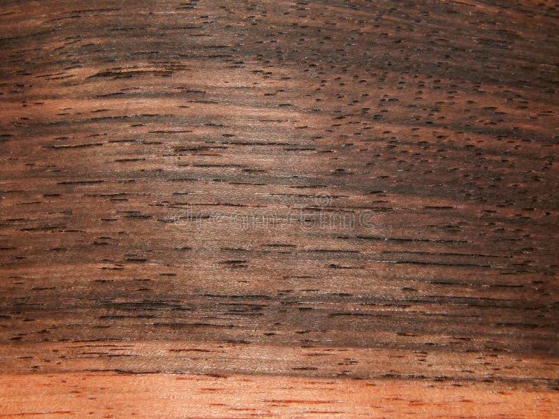 自然木表面饰板木乌木Eben Makasar 库存图片