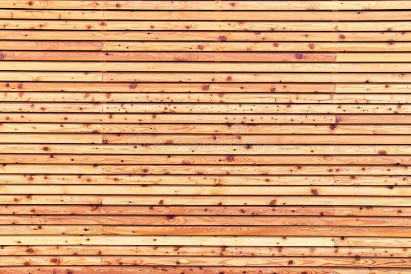 自然木衬里纹理  库存图片