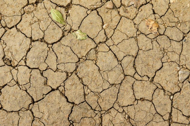 自然本底,干燥破裂的地面 图库摄影
