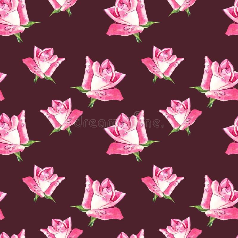 自然桃红色玫瑰背景 红色和桃红色玫瑰,水彩例证的无缝的样式 向量例证