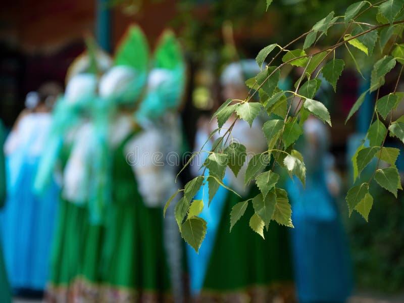 自然植被树枝菩提树叶子弄脏了全国服装的背景女孩 库存图片