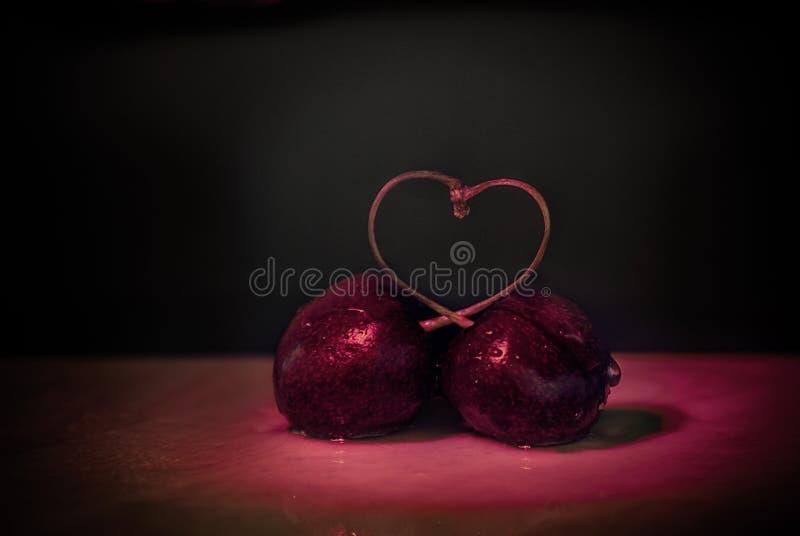 自然樱桃爱 库存图片