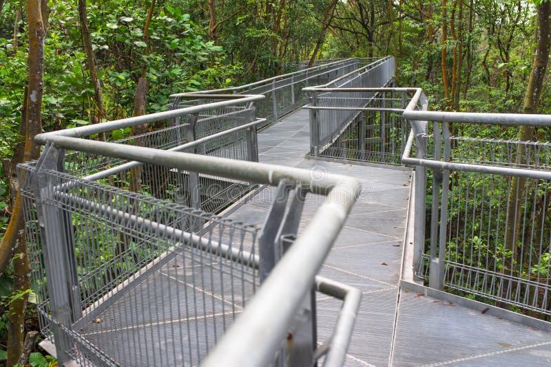 自然步行 免版税图库摄影