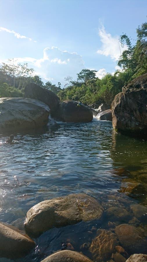 自然池 库存照片