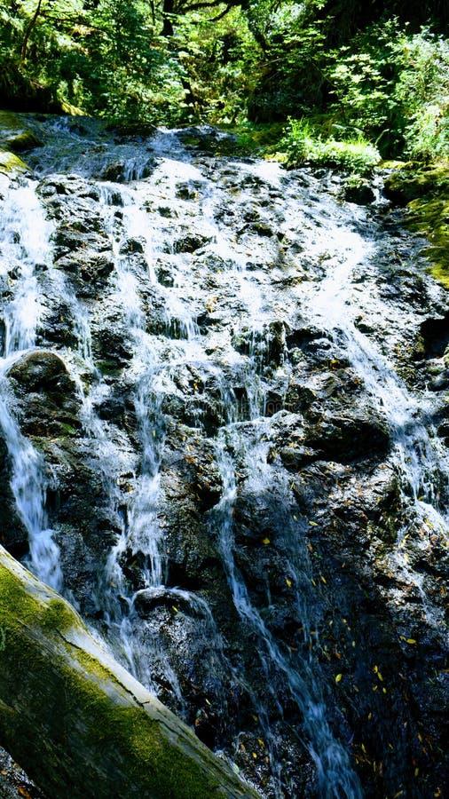 自然瀑布找到探索阿拉斯加的秀丽 免版税图库摄影