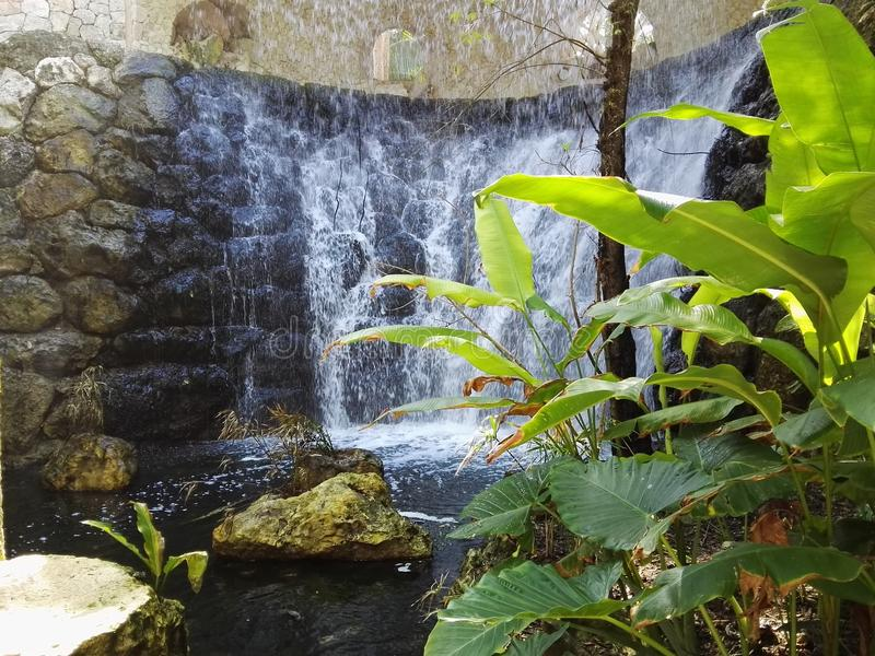 自然瀑布 库存图片